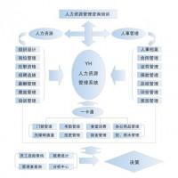 人事管理软件,人事管理系统